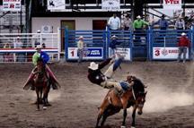 Image:2006-07-28 - United States - Wyoming - Cody - Rodeo - Cowboy.jpg