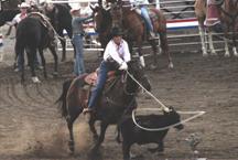 Image:Roping a calf at the Buffalo Bill Cody Stampede Rodeo.jpg