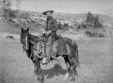 Image:Cowboy.jpg
